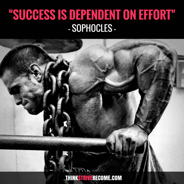 Success is dependent on Effort Quote