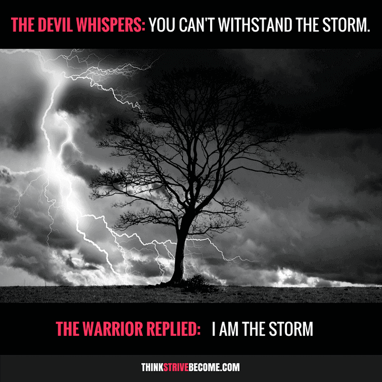 Courage Quotes I am the Storm