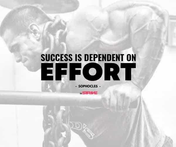 Success and Effort Quote