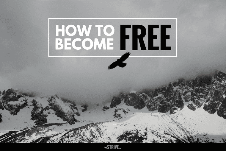 How To Become Free