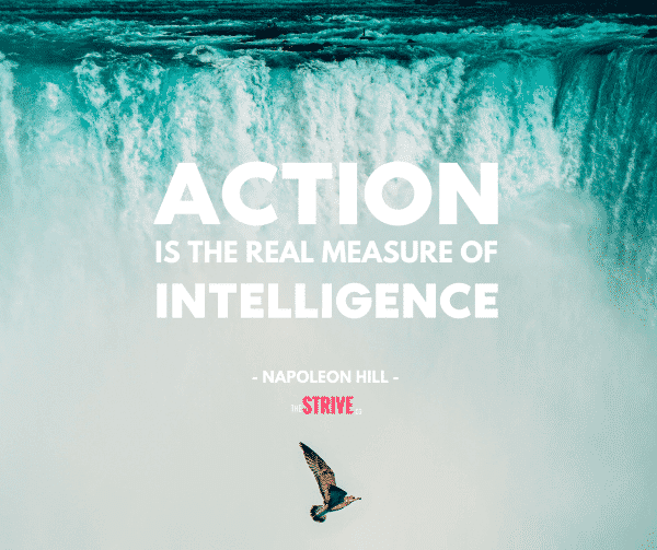 Action is Intelligence Quote
