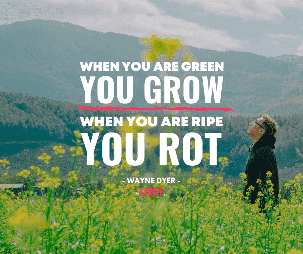 Dr Wayne Dyer Quote on Growth