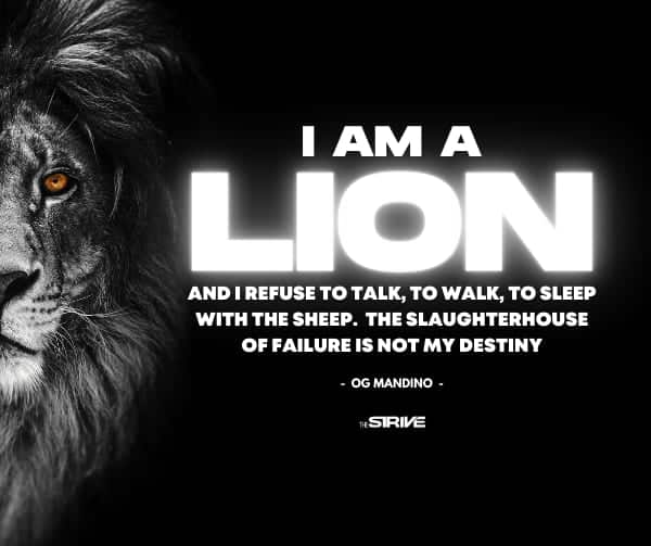 Og Mandino Quotes I am a Lion
